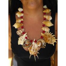 La collana con conchiglie tropicali